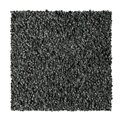 Mohawk Matchless I Carpet – Color Harbor