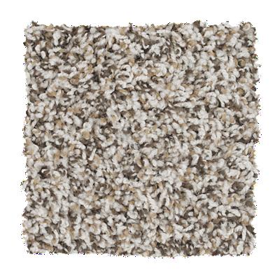 Mohawk Roll It Out Carpet – Color Illusion